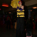 Mardi gras costume provided by client
