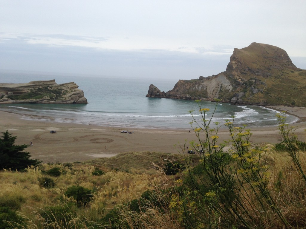 Discovery Cove, Castlepoint, NZ