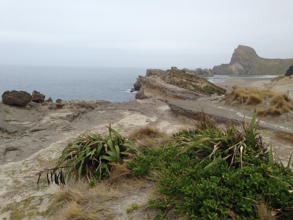 Castle Rock, Castlepoint, NZ