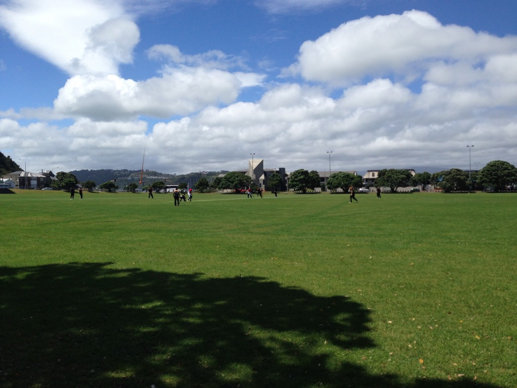 Cricket, Wellington v. Canterbury, NZ