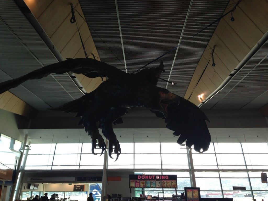 Gandolf at Wellington Airport, NZ