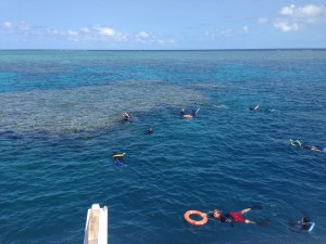 Great Barrier Reef snorkelers